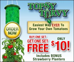 Topsy Turvy Planter: Buy One And Get One FREE!