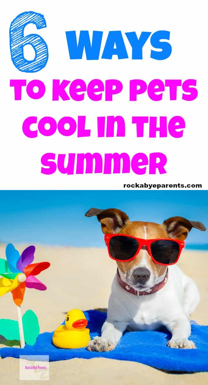 6 Ways to Keep Pets Cool in the Summer