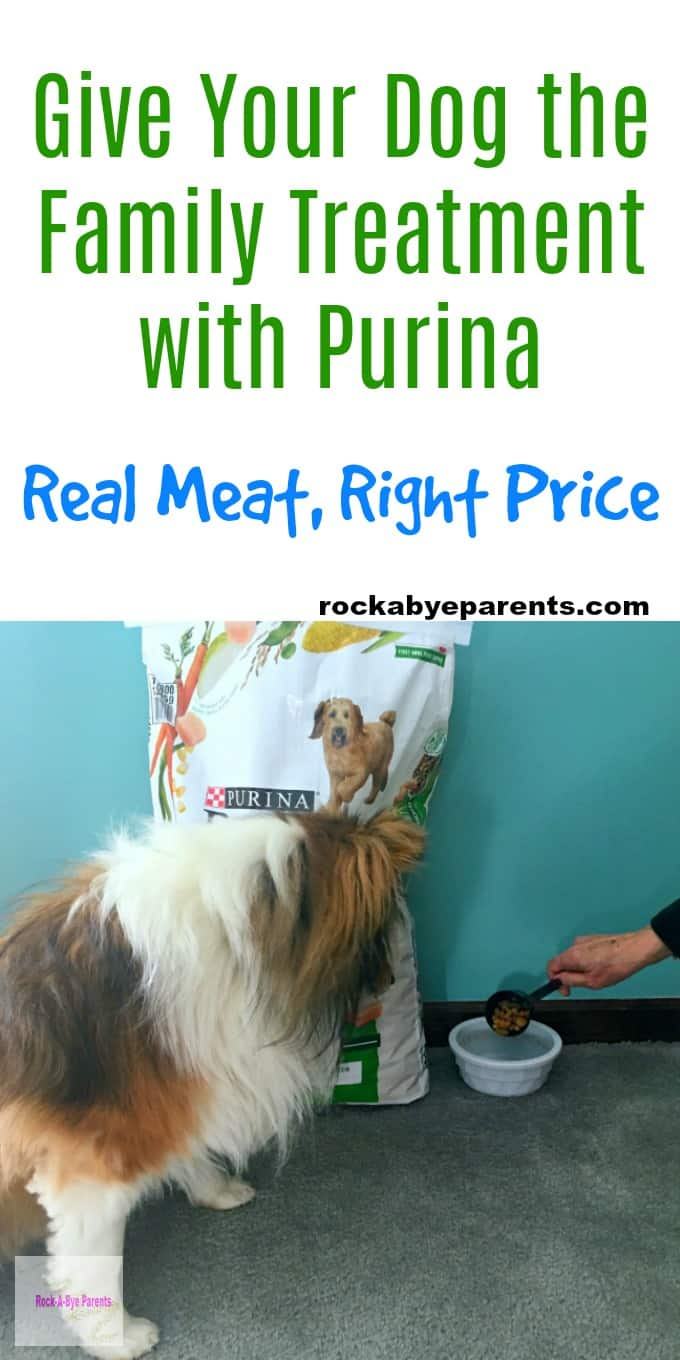 Give Your Dog the Family Treatment with Purina - Real Meat, Right Price
