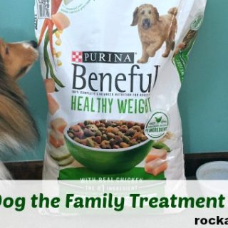 Give Your Dog The Family Treatment With Purina #CheckYourPetFood
