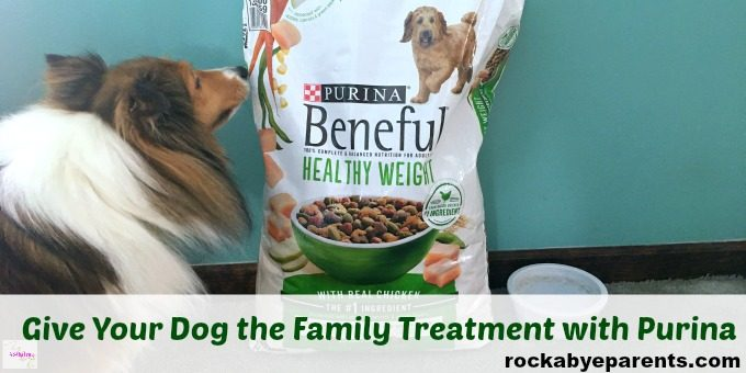 Why Feed Your Dog Purina