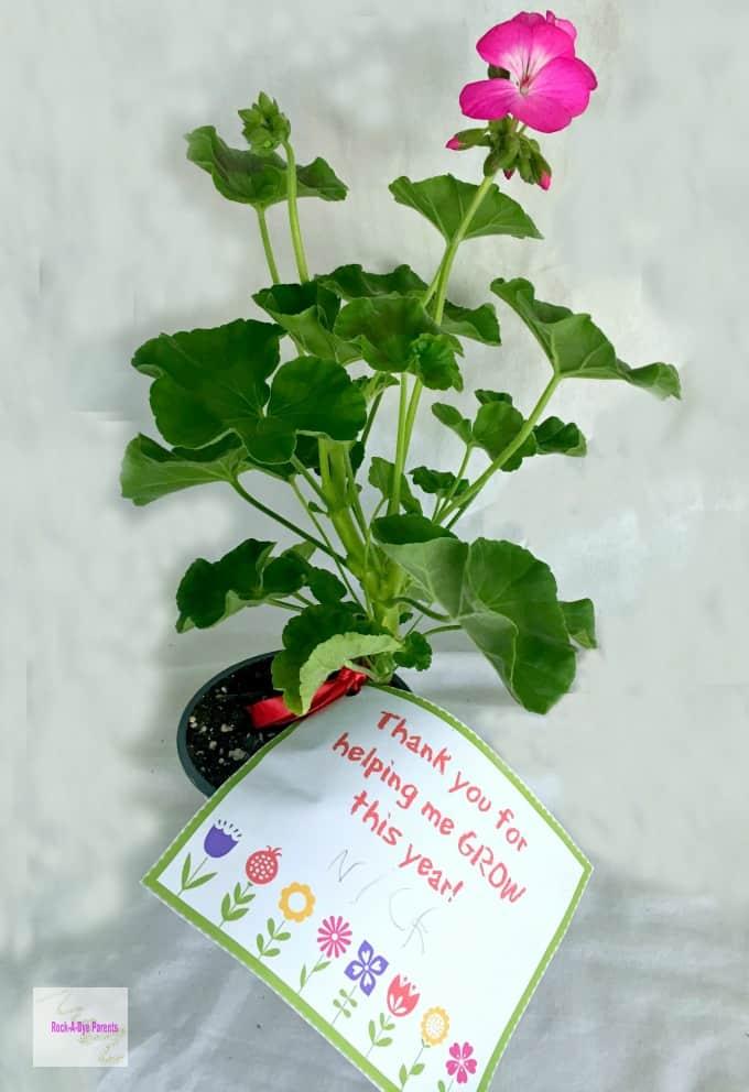 DIY Teacher Flower Gift