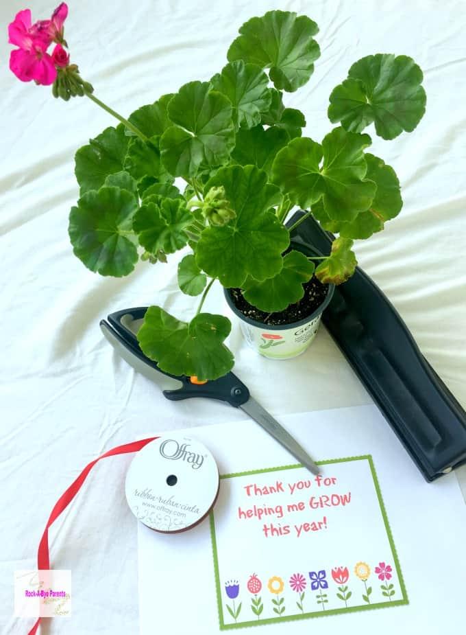 Plant Teacher Gift Supplies