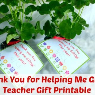 Printable Teacher Thank You